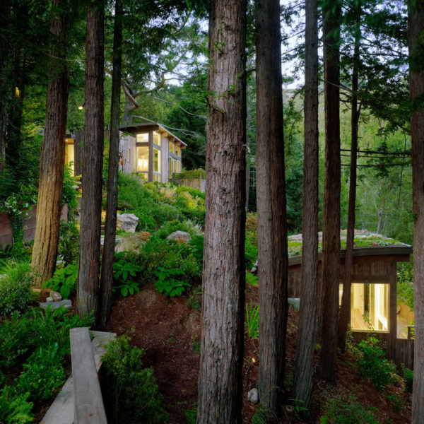 Two Hillside Cabins In The Trees By Feldman Architecture: Harvest Timber Specialty Products